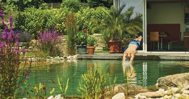 Schwimmteiche bieten natürlichen Badespaß
