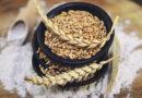 Dinkel: Renaissance des goldenen Korns