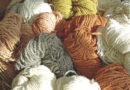 Wollige Wärme vom Schaf