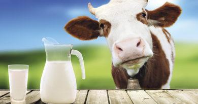Kein Ersatz für Milch