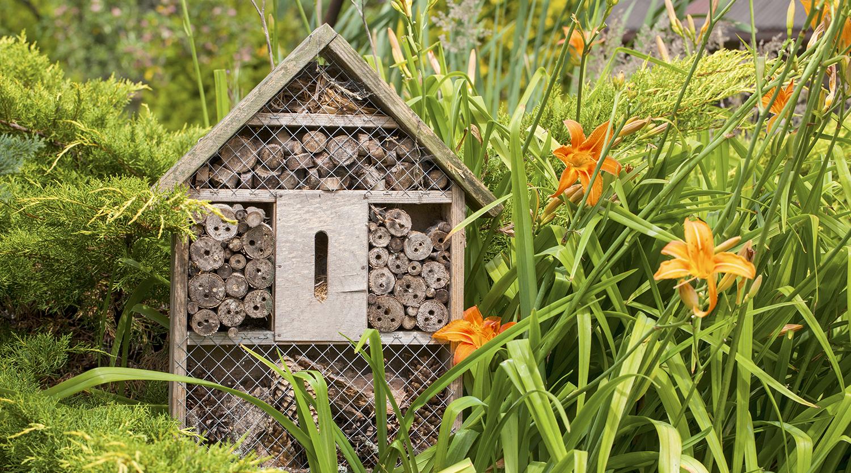 In wenigen Schritten zum selbstgebauten Insektenhotel