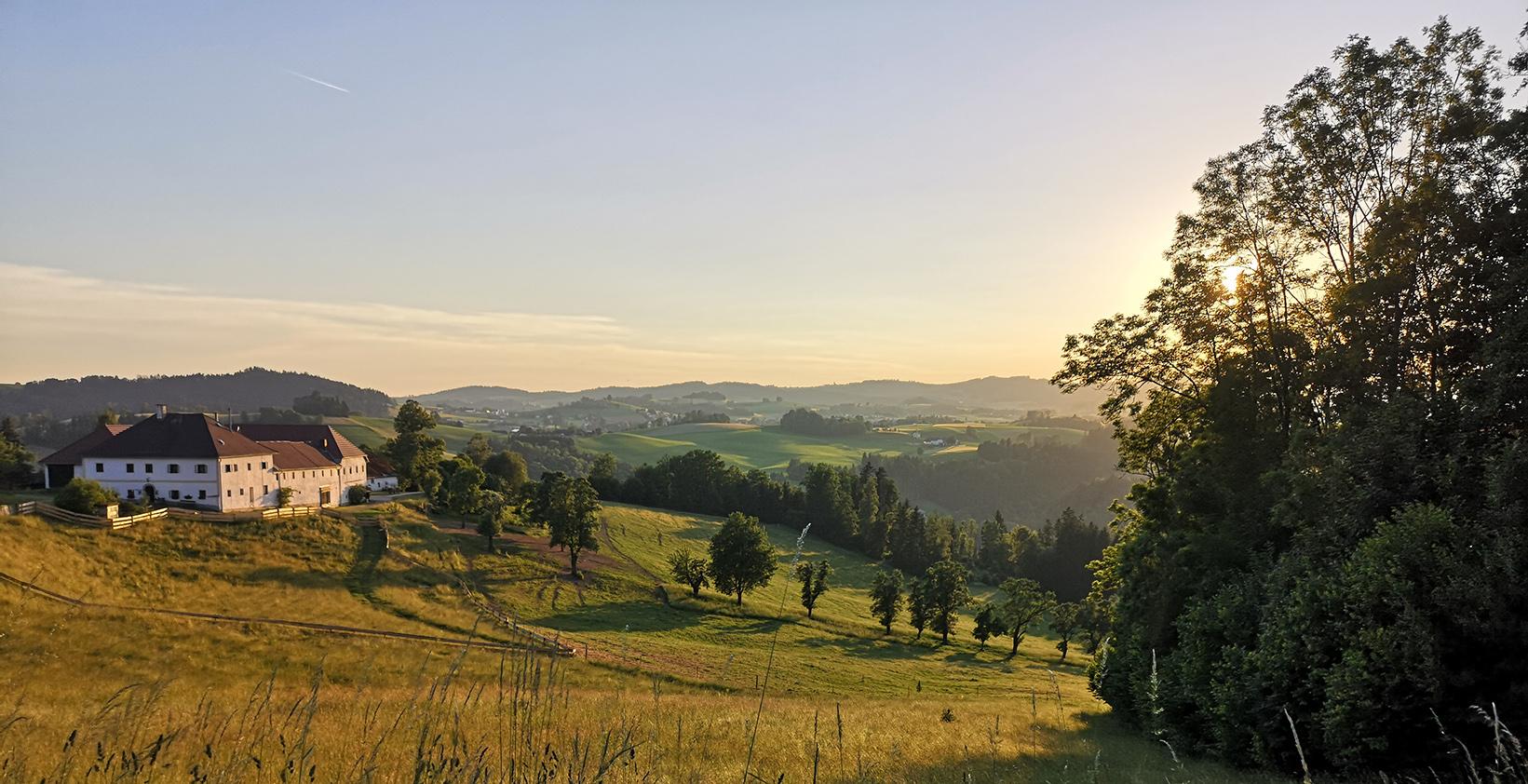 Yogaurlaub in Oberösterreich